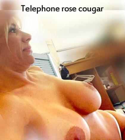 Comment utiliser le telephone rose cougar avec une salope ?
